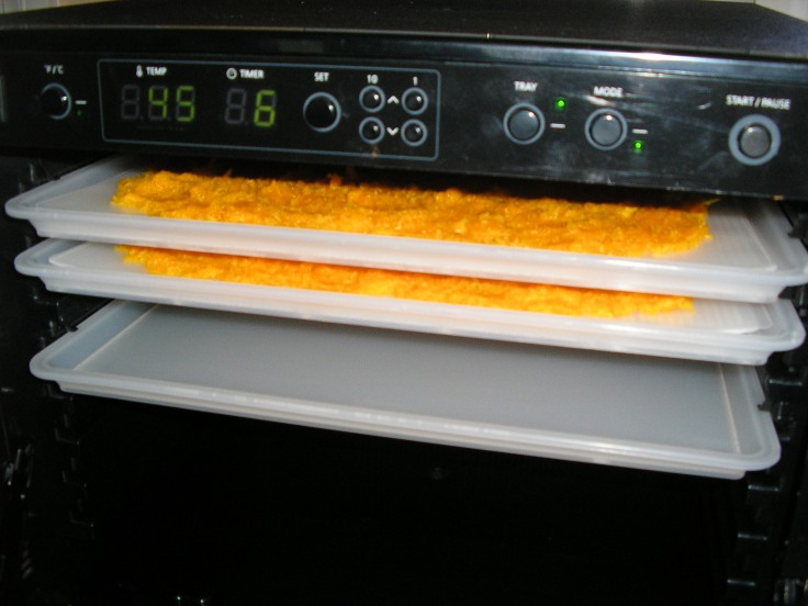 Into the dehydrator